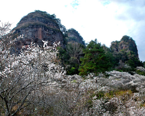 景点 平远县景点 五指石风景区  由于垂直节理发育,在长期强烈的流水